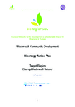 Irish Bioenergy Action Plan & Adoption