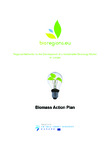 Czech Bioenergy Action Plan & Adoption